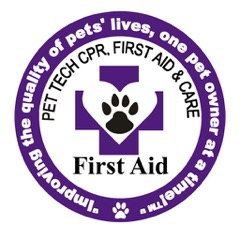 Patch First Aid for pet tech (2)