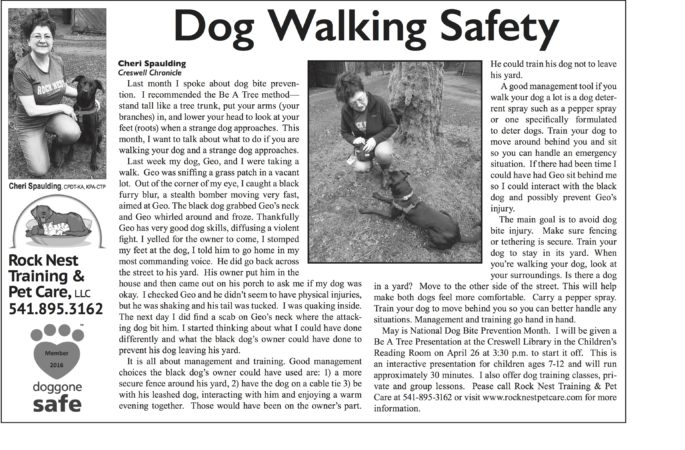 Dog Walking Safety Training Rock Nest Pet Training Article