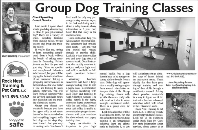 Group Dog Training Classes Eugene, Springfield, Creswell Oregon Article